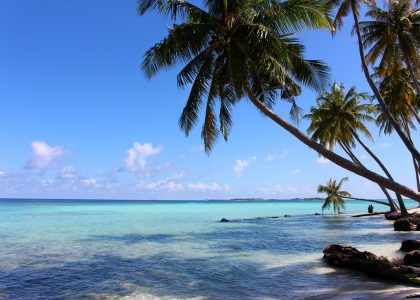 Top Places in Malvides, Maafushi