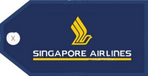 Singapore Airline Baggage Info