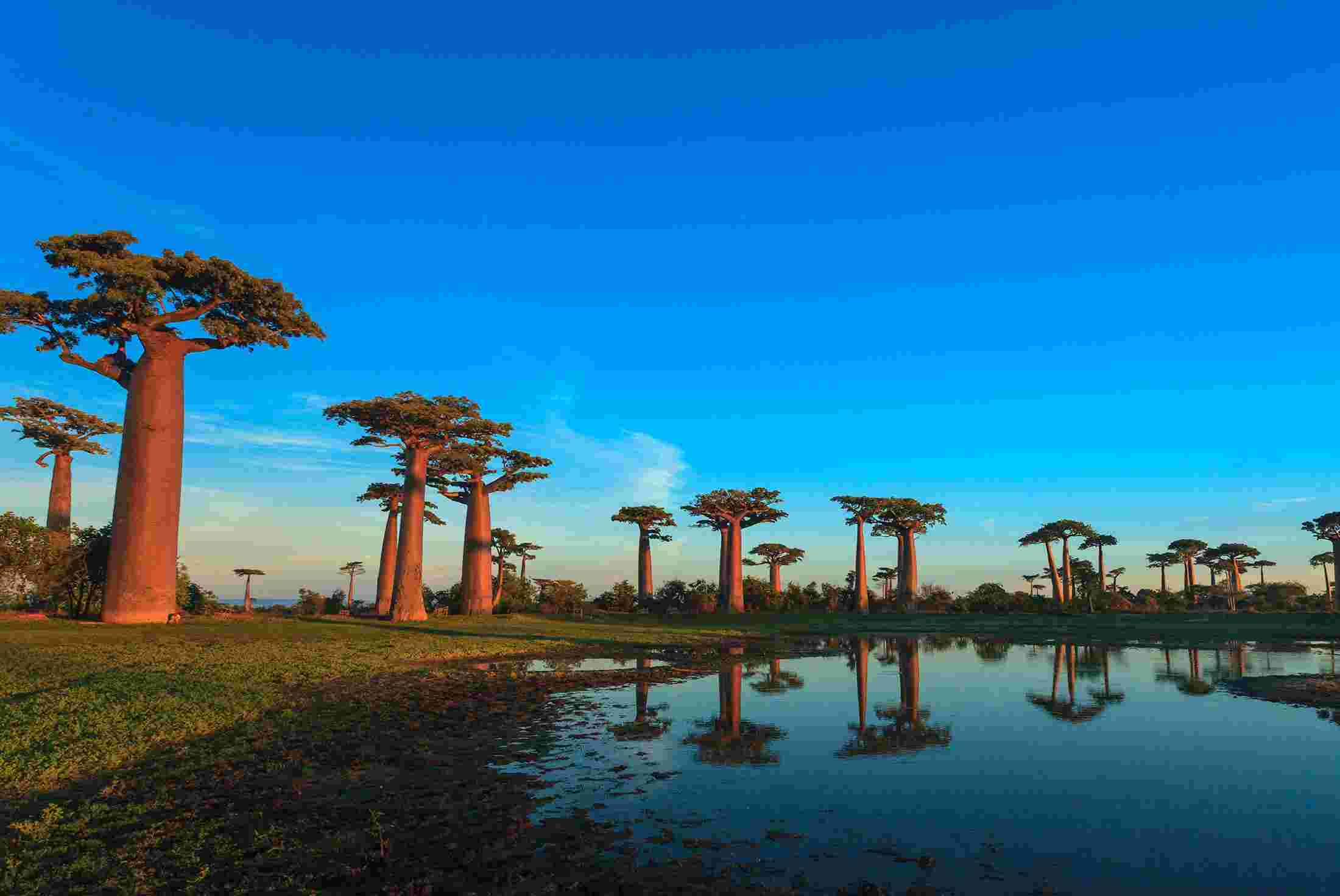 Madagascar Visa Requirements