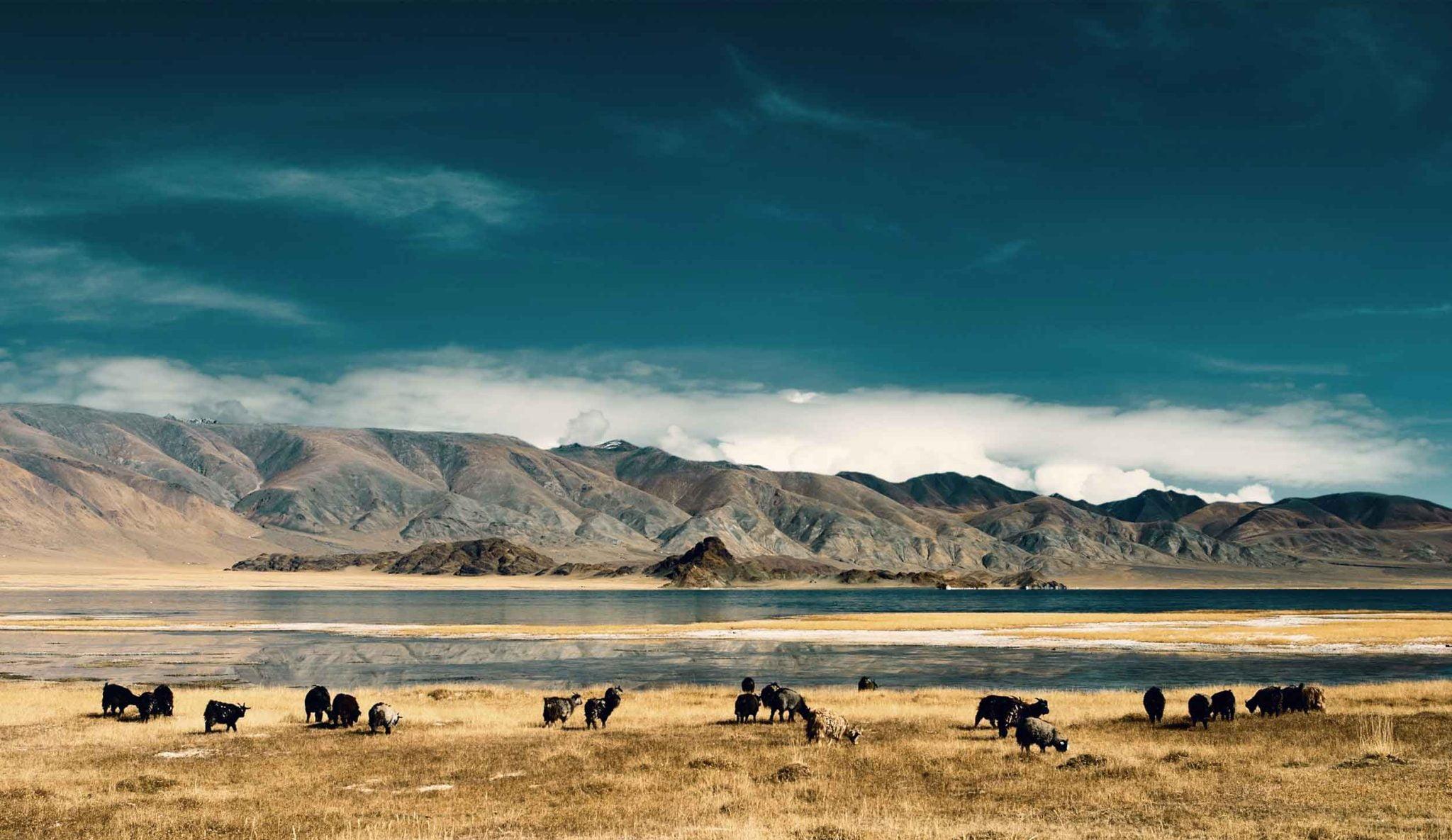 Mongolia Visa Requirements