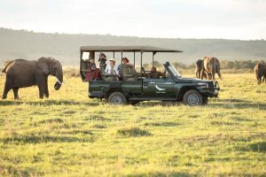 Masai Mara The Best Place for Safari in Kenya